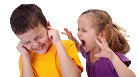 What's the Secret to Taming Sibling Rivalry?