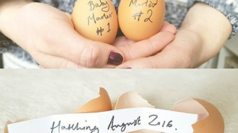 20 Cute Twin Pregnancy Announcements From Pinterest