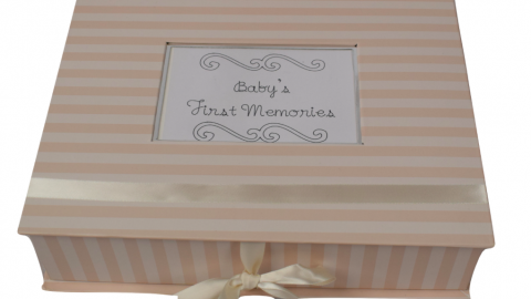 Cute Ideas to Capture and Save Memories of Your Twins