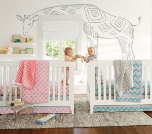 Ideas For Your Twin Nursery