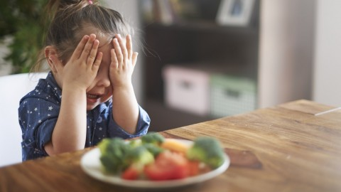 How I Cope as the Mum of a Picky Eater? (the Most Useful Tips)