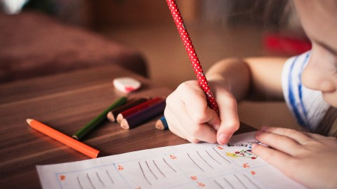 A Guide to Choosing a Tutor for your Child