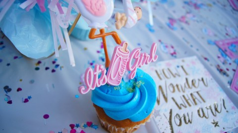 Twin Gender Reveal – Party Inspiration