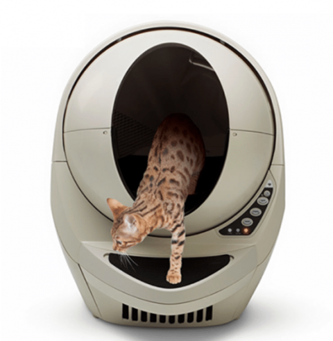 Considering a Litter Robot For Your Home?