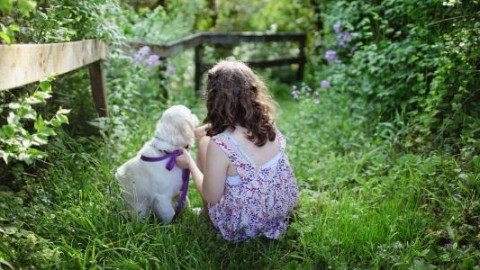 Why every baby needs a dog in their life
