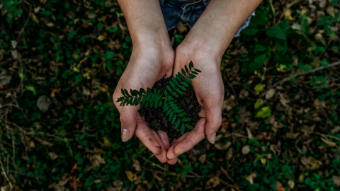 Ways to Be A More Sustainable Parent